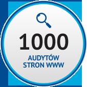 Grafika 1000 audytów stron www
